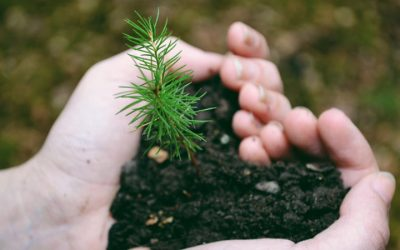 April 22nd Is National Earth Day